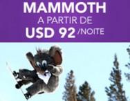 Mammoth – EUA